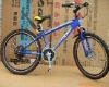 EEC DLEVM1006 TAIWAN KENDA TIRE ALUMINUM ALLOY MOUNTAIN BIKE