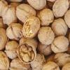 100% natural ,higth quality Walnut P.E., Juglans Regia P.E.