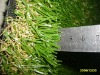 Leisure Artificial Turf 40mm