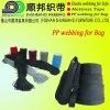 PP webbing (p2)