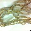 korean jewelry accessories
