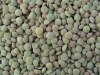 Chinese Green Lentil
