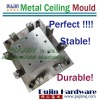 Ceiling Panel moulding