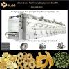 Large mesh belt dryer for drying pineapple/apple slice/banana dices/Mango strips