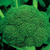 Thailand sell like hot cakes fresh broccoli