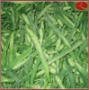 IQF Green Bean Cut