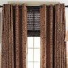 Sahara Curtain