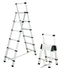 TELESCOPIC LADDER TLD-02