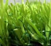 Green Artificial Grass for Garden Roof Terrace, Garden Carpet Grass, Artificial Decorative Grass