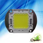 Multichips LED module 80W True White
