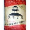 Shunan Quick Dry Cement SA826