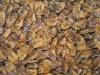 frozen silkworm pupae