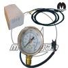 cng pressure gauges(AY)
