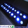 High Power CREE 60W Aquarium Lights