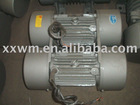 Two vibration motor for sieving equipment