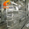 Professional production Chicken cage(factory)
