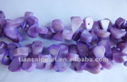 hot on sale!!!free shipping!!!beautiful purpleloose coral is on sale!!welcome to see