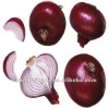 lowest price fresh red onion wholesale