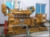 20~300 KW small HOT Natural gas generator