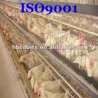 layer poultry cages