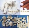 Dioscoreae Rhizoma/Common Yam/Yam