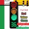 CE ROHS approved LED Traffic Light Signal 300mm