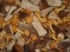 frozen mix mushroom