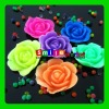 Factory cost flower crystal soil expand 600% of size assorted colors&style rainbow bead
