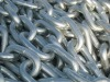 STUDLESS ANCHOR CHAIN