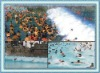 Artificial Wave Pool
