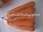Chinese fresh carrot