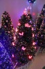 Plastic Christmas Tree with LED lights