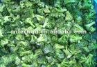 2012 Fresh Broccoli Made Frozen Broccoli