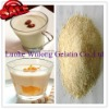 High Quality edible gelatin for yoghourt