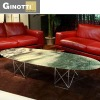 Ginotti Modern Elegant Oval Table GCT6664