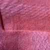 Coral Plush Fleece Fabric with Shiner