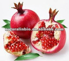 Pomegranate Juice Extract