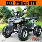 250cc Quad ATV 250 (EEC Off Road )