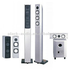 5.1 Digital Home Theater System (PL-008A)