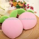 fruit bath sponge