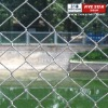 ISO9001:2008 low carbon steel High Quality Chain Link Fence Manufacturer