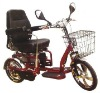 Luxury folded electric trike with double driving