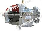 Cummins Engine Parts Fuel Pump NT855-G2