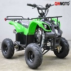 90CC/110CC/125CC ATV Hunter/Quad Bike with 7 Inch Tyre (QW-ATV-02C)