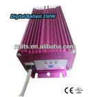 HID Digital Ballast