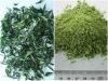 barley grass powder /barley leaf