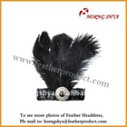 Ostrich Feather Headdress headgear
