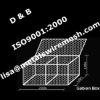 80mmx120mm Heavy Galvanized Hexagonal Wire Mesh (ISO9001:2000 Factory)