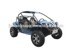 1100cc (4x4) buggy