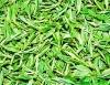 Green Tea polyphenols (EGCG 10%-99%)
